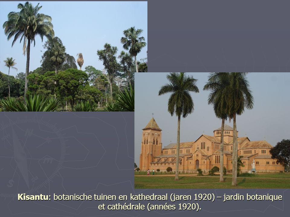 Kisantu: botanische tuinen en kathedraal (jaren 1920) – jardin botanique et cathédrale (années 1920).