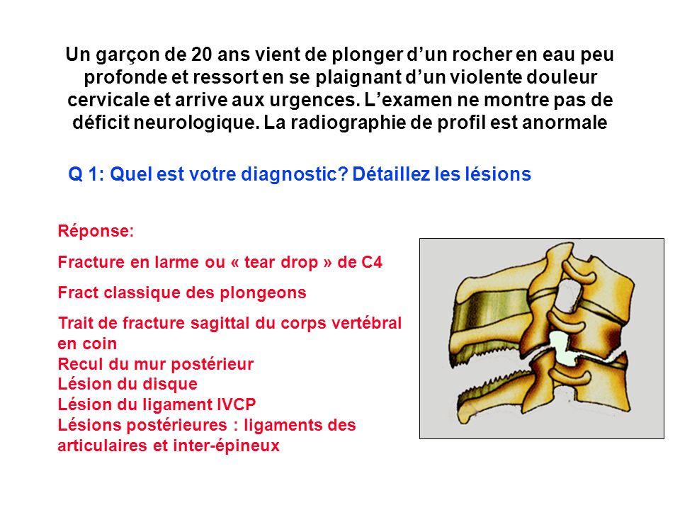 Q 1: Quel est votre diagnostic Détaillez les lésions