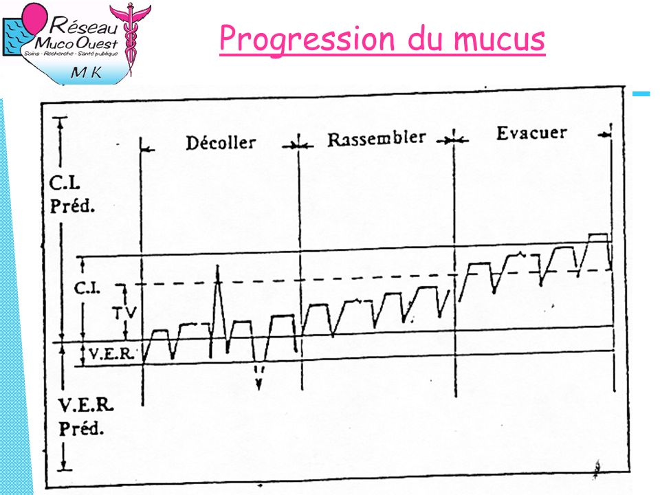 Progression du mucus
