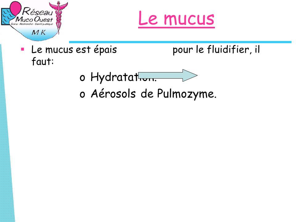 Le mucus Hydratation. Aérosols de Pulmozyme.