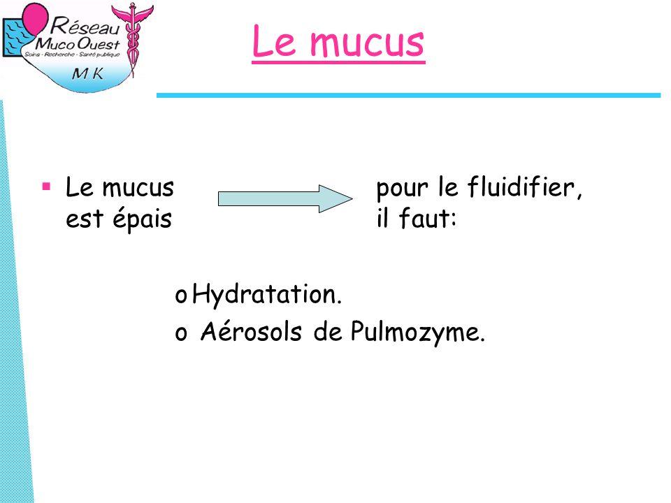 Le mucus Le mucus pour le fluidifier, est épais il faut: Hydratation.