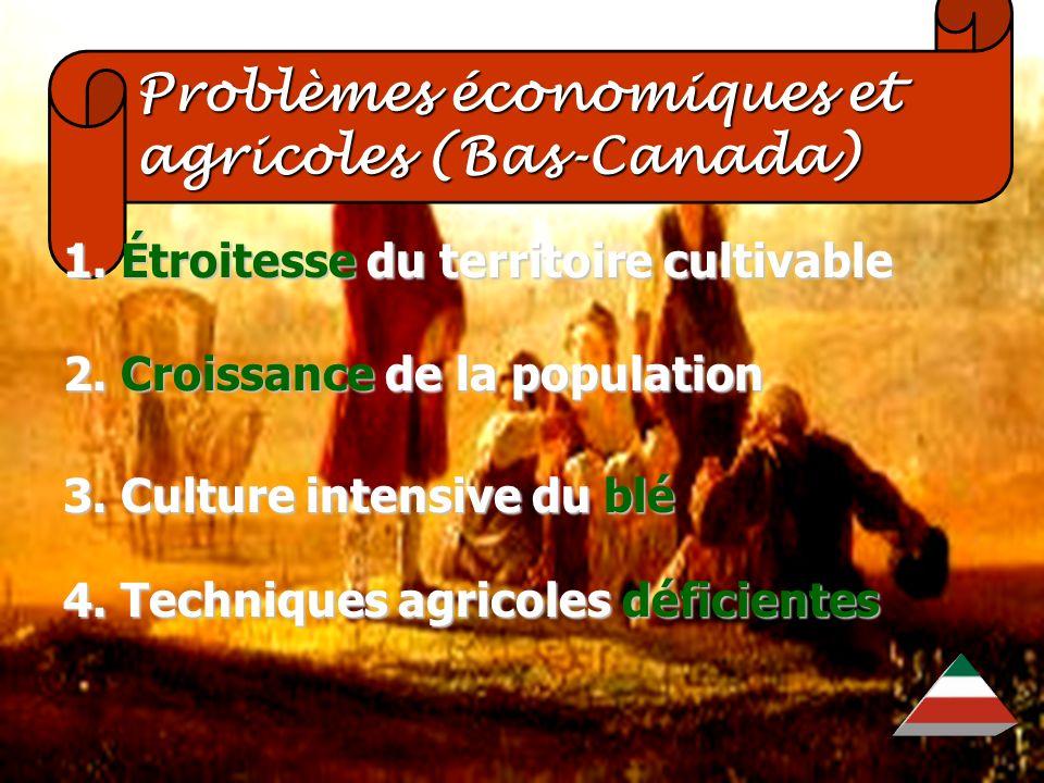 Problèmes économiques et agricoles (Bas-Canada)