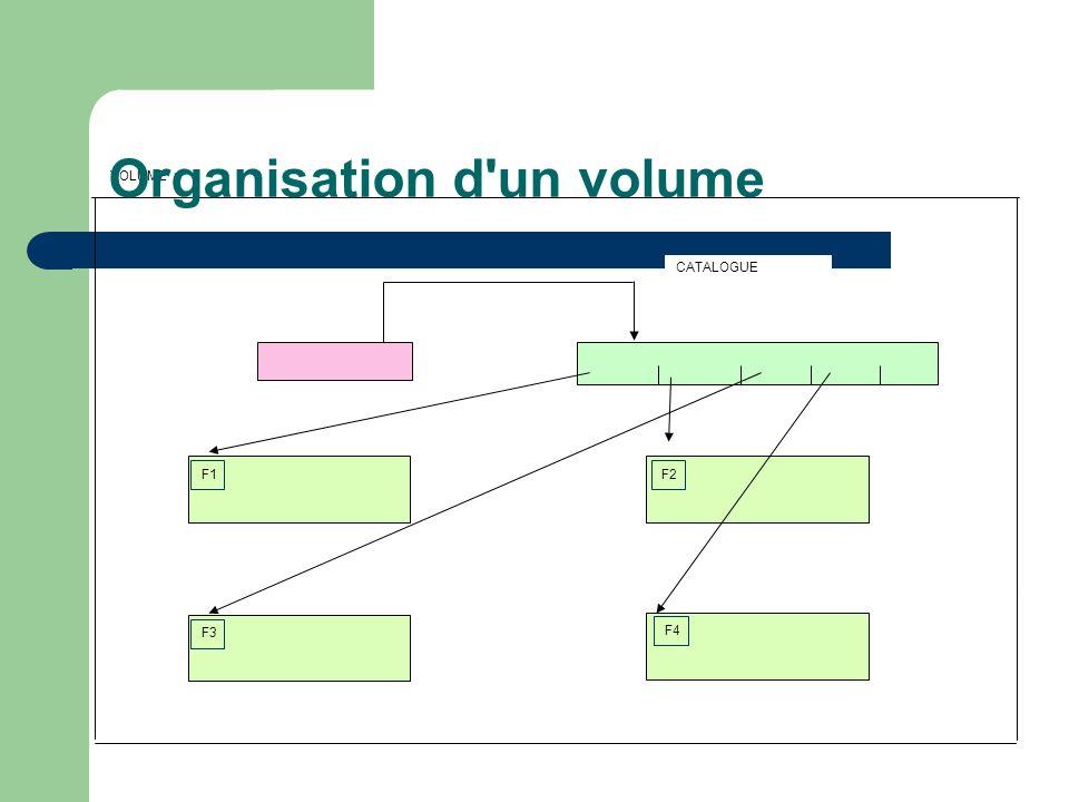 Organisation d un volume