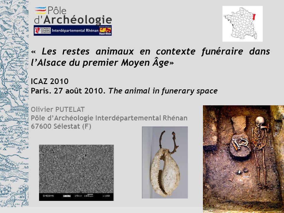 « Les restes animaux en contexte funéraire dans l'Alsace du premier Moyen Âge»