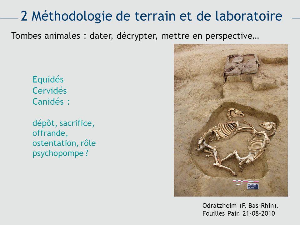2 Méthodologie de terrain et de laboratoire