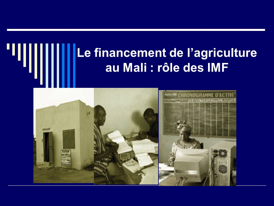 Le financement de l'agriculture au Mali : rôle des IMF