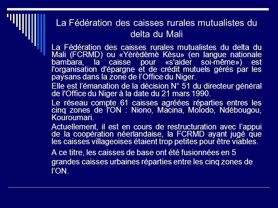 La Fédération des caisses rurales mutualistes du delta du Mali