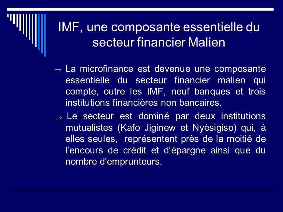 IMF, une composante essentielle du secteur financier Malien