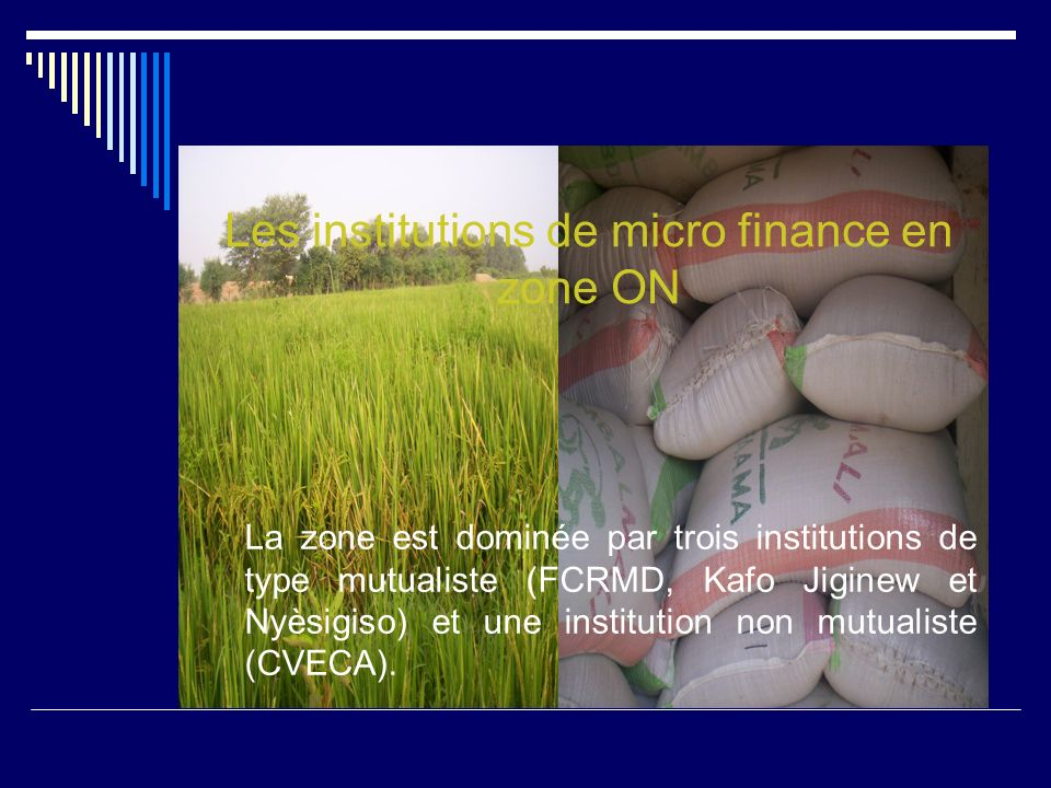 Les institutions de micro finance en zone ON