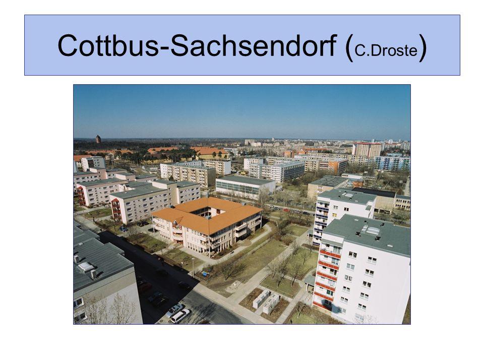Cottbus-Sachsendorf (C.Droste)