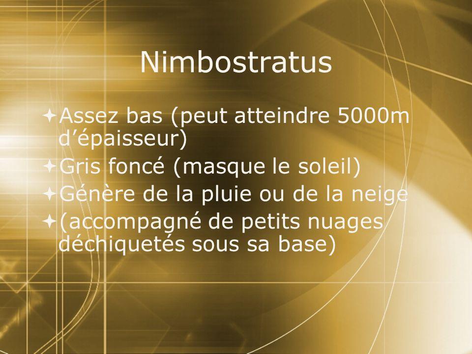 Nimbostratus Assez bas (peut atteindre 5000m d'épaisseur)