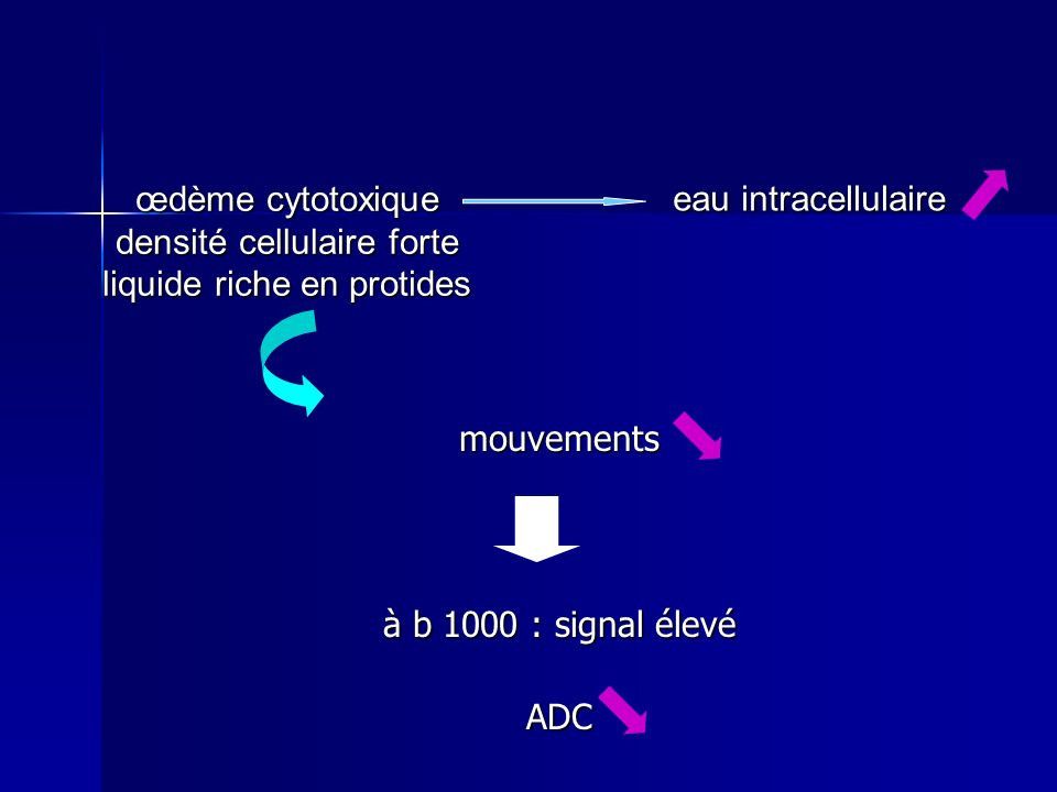 densité cellulaire forte liquide riche en protides eau intracellulaire