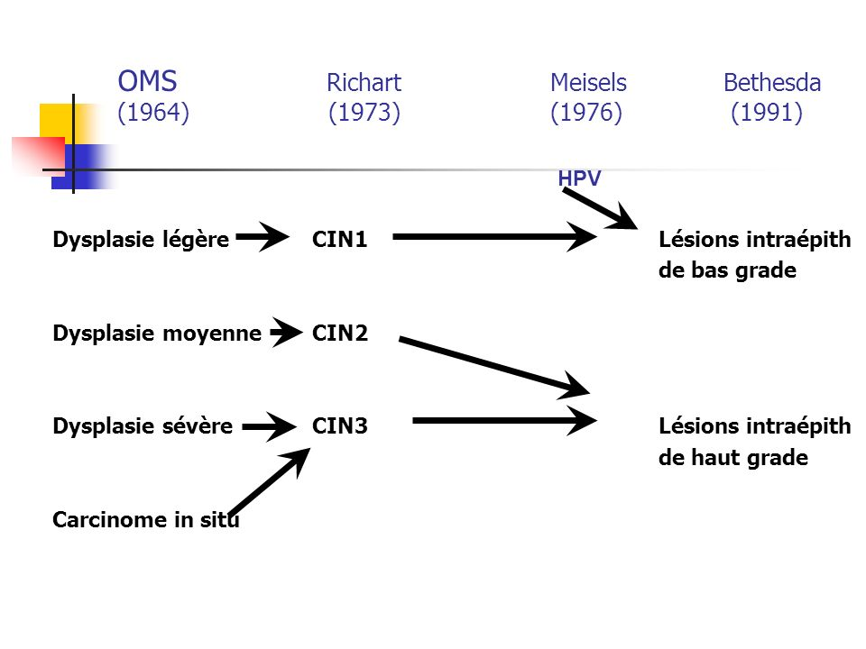 OMS Richart Meisels Bethesda (1964) (1973) (1976) (1991)