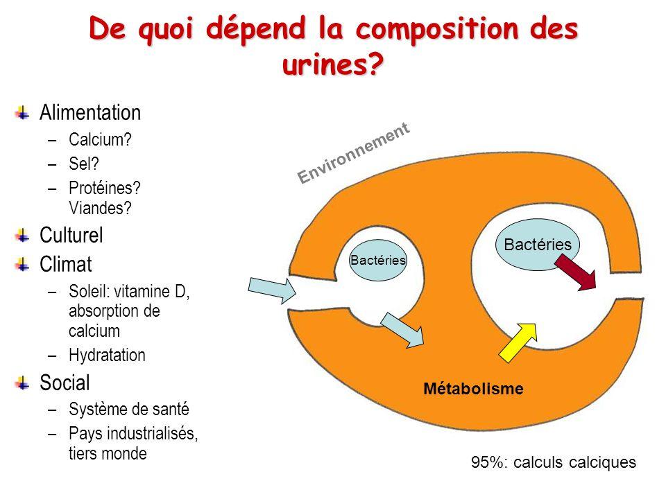 De quoi dépend la composition des urines