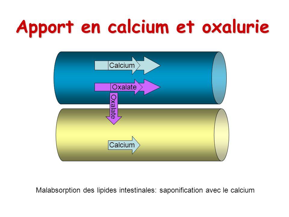 Apport en calcium et oxalurie
