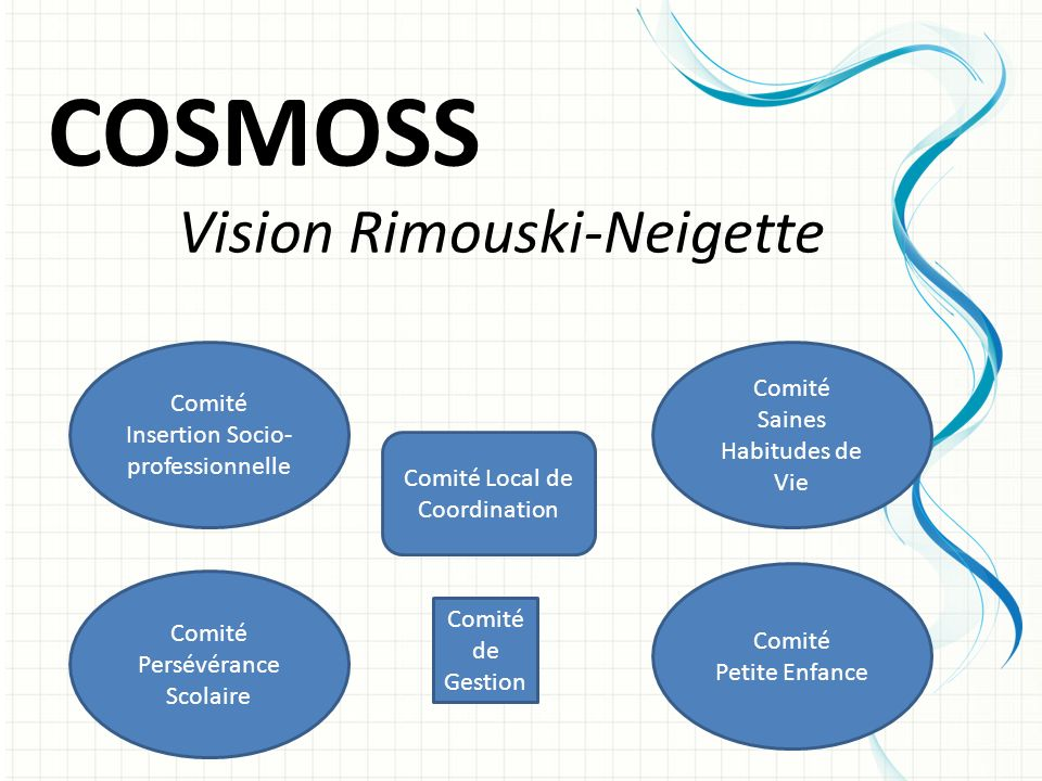 COSMOSS Vision Rimouski-Neigette Comité Comité Saines Habitudes de Vie