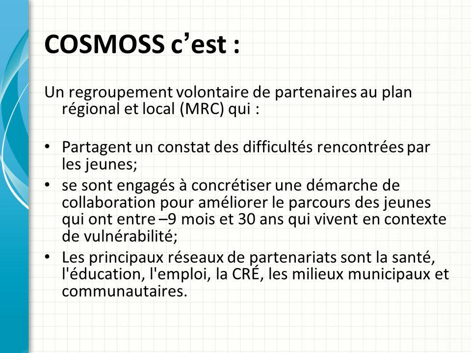 COSMOSS c'est : Un regroupement volontaire de partenaires au plan régional et local (MRC) qui :
