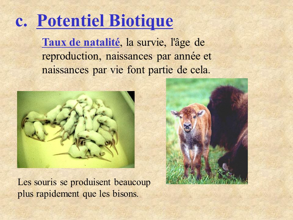 c. Potentiel Biotique Taux de natalité, la survie, l âge de reproduction, naissances par année et naissances par vie font partie de cela.