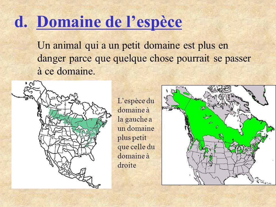 d. Domaine de l'espèce Un animal qui a un petit domaine est plus en danger parce que quelque chose pourrait se passer à ce domaine.