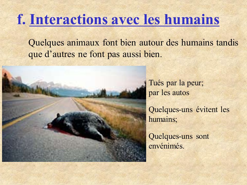 f. Interactions avec les humains