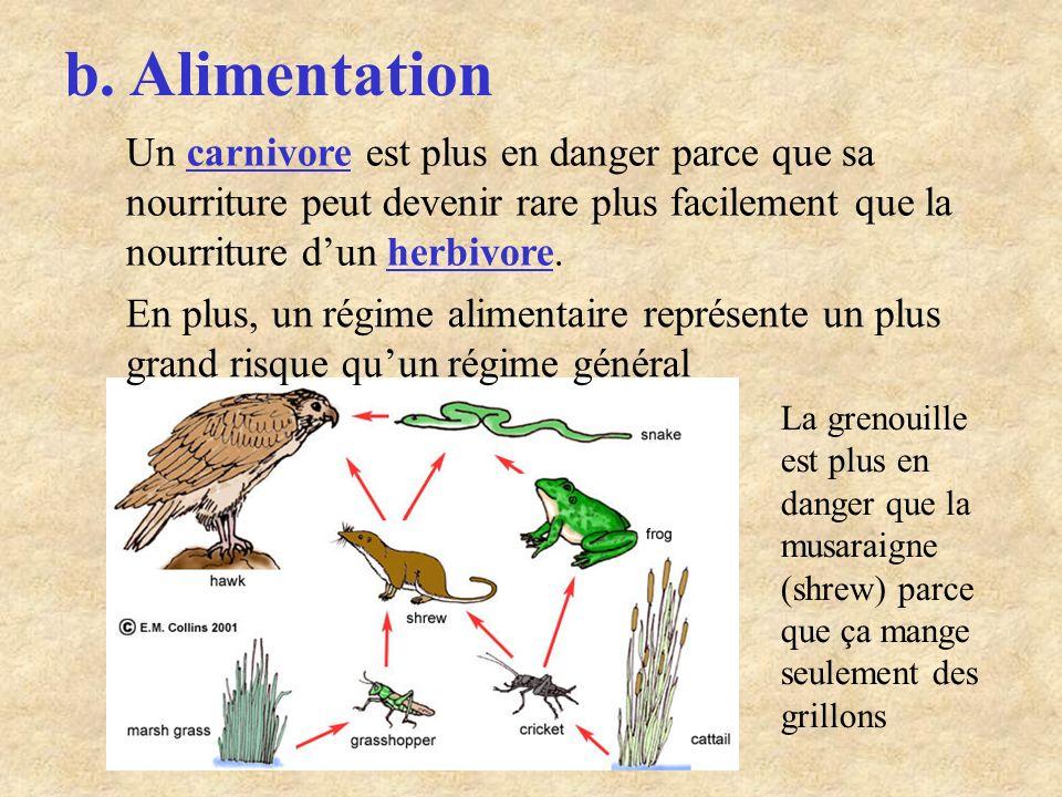 b. Alimentation Un carnivore est plus en danger parce que sa nourriture peut devenir rare plus facilement que la nourriture d'un herbivore.