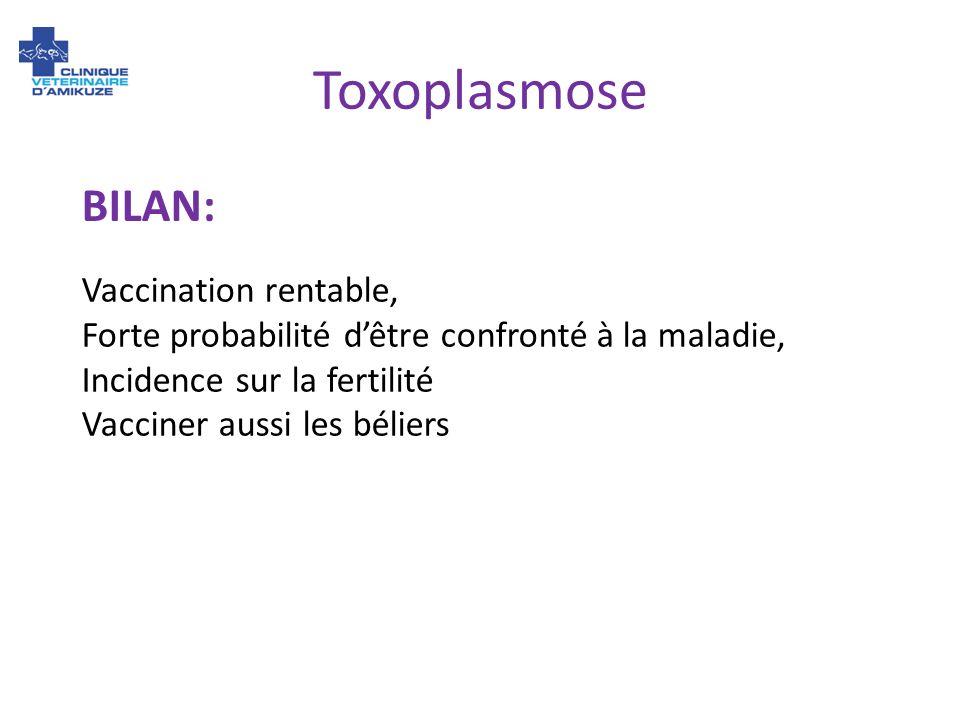 Toxoplasmose BILAN: Vaccination rentable,