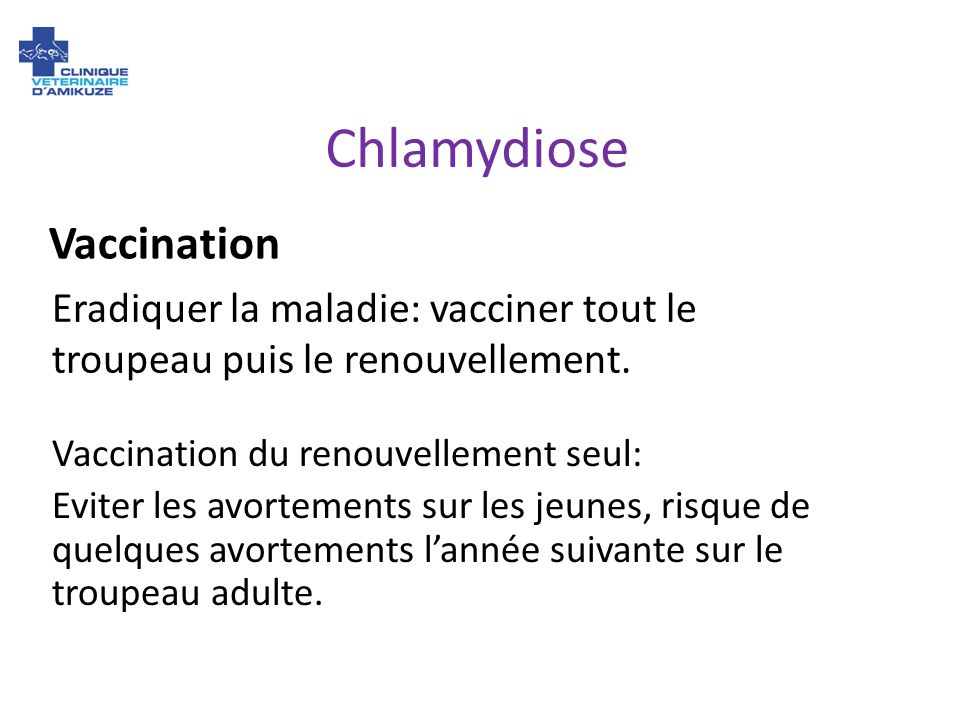 Chlamydiose Vaccination