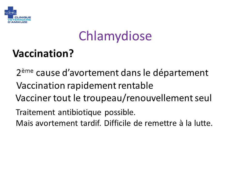 Chlamydiose Vaccination 2ème cause d'avortement dans le département