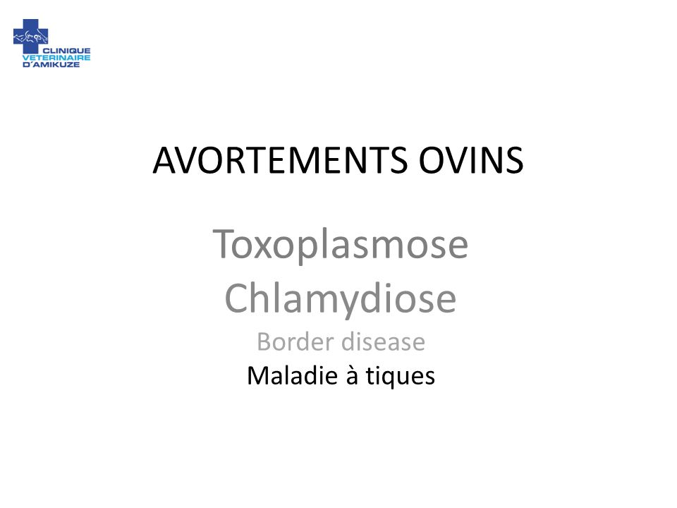Toxoplasmose Chlamydiose Border disease Maladie à tiques