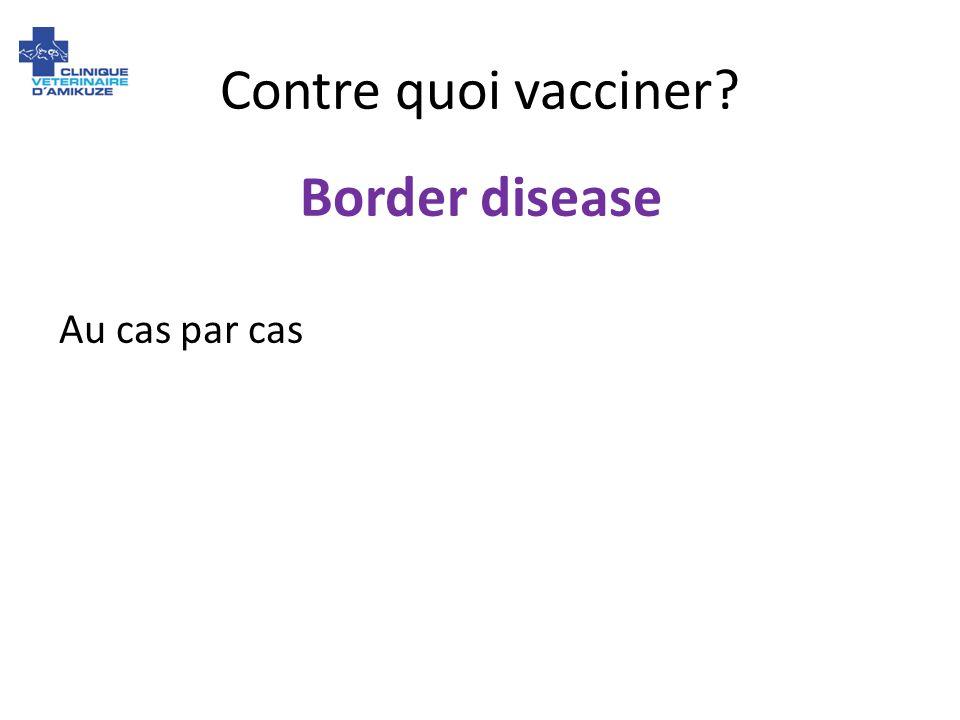 Contre quoi vacciner Border disease Au cas par cas