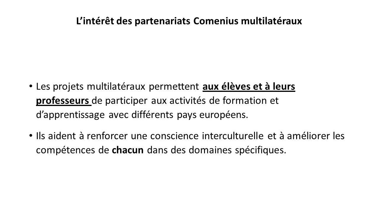 L'intérêt des partenariats Comenius multilatéraux