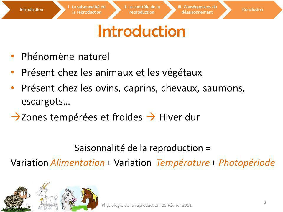 Introduction Phénomène naturel