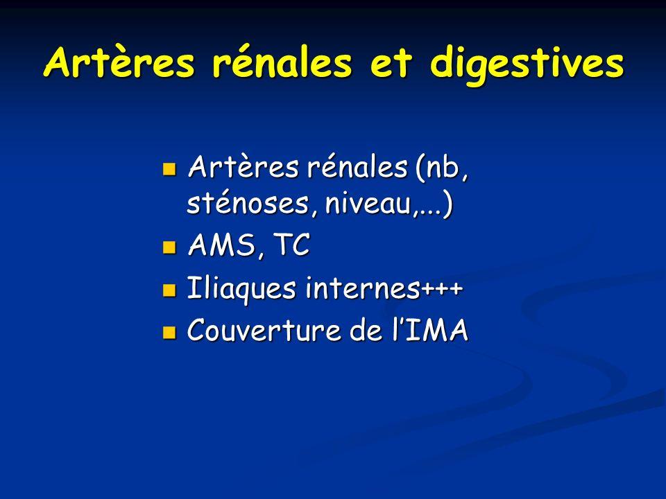 Artères rénales et digestives