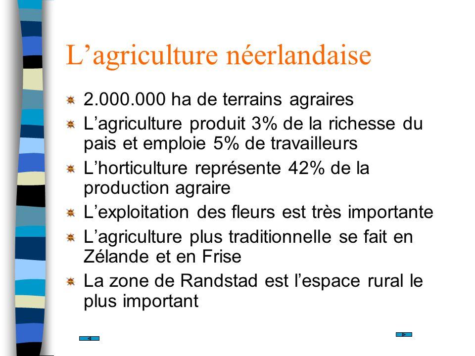 L'agriculture néerlandaise