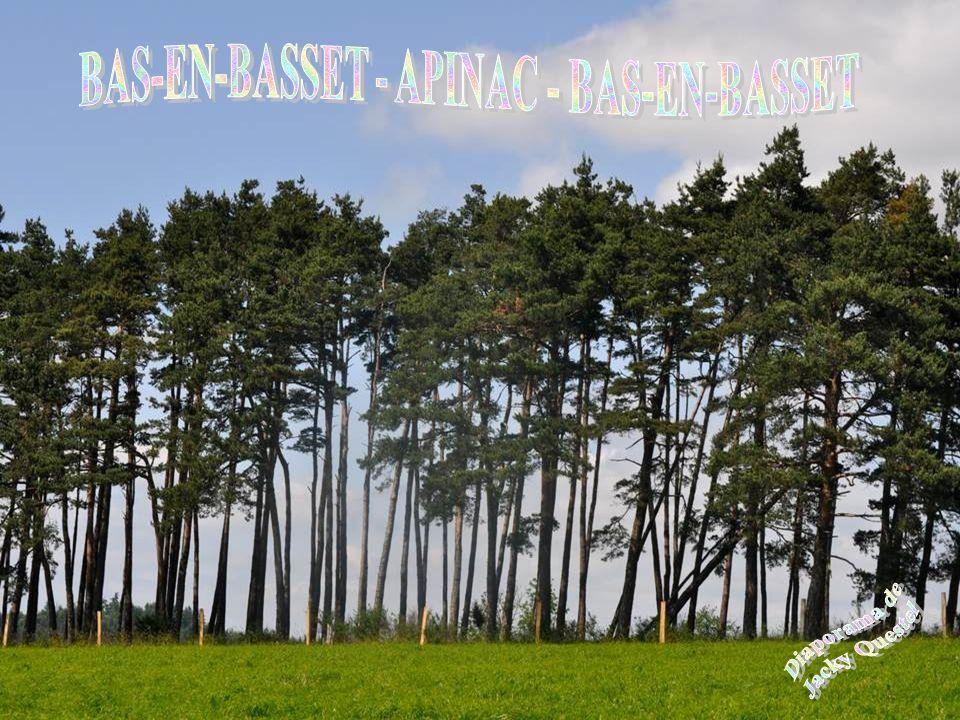 BAS-EN-BASSET - APINAC - BAS-EN-BASSET