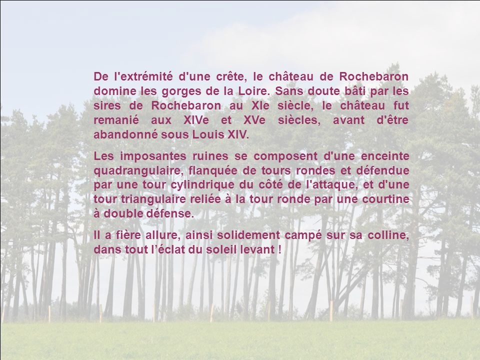 De l extrémité d une crête, le château de Rochebaron domine les gorges de la Loire. Sans doute bâti par les sires de Rochebaron au XIe siècle, le château fut remanié aux XIVe et XVe siècles, avant d être abandonné sous Louis XIV.