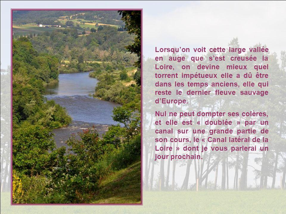 Lorsqu'on voit cette large vallée en auge que s'est creusée la Loire, on devine mieux quel torrent impétueux elle a dû être dans les temps anciens, elle qui reste le dernier fleuve sauvage d'Europe.