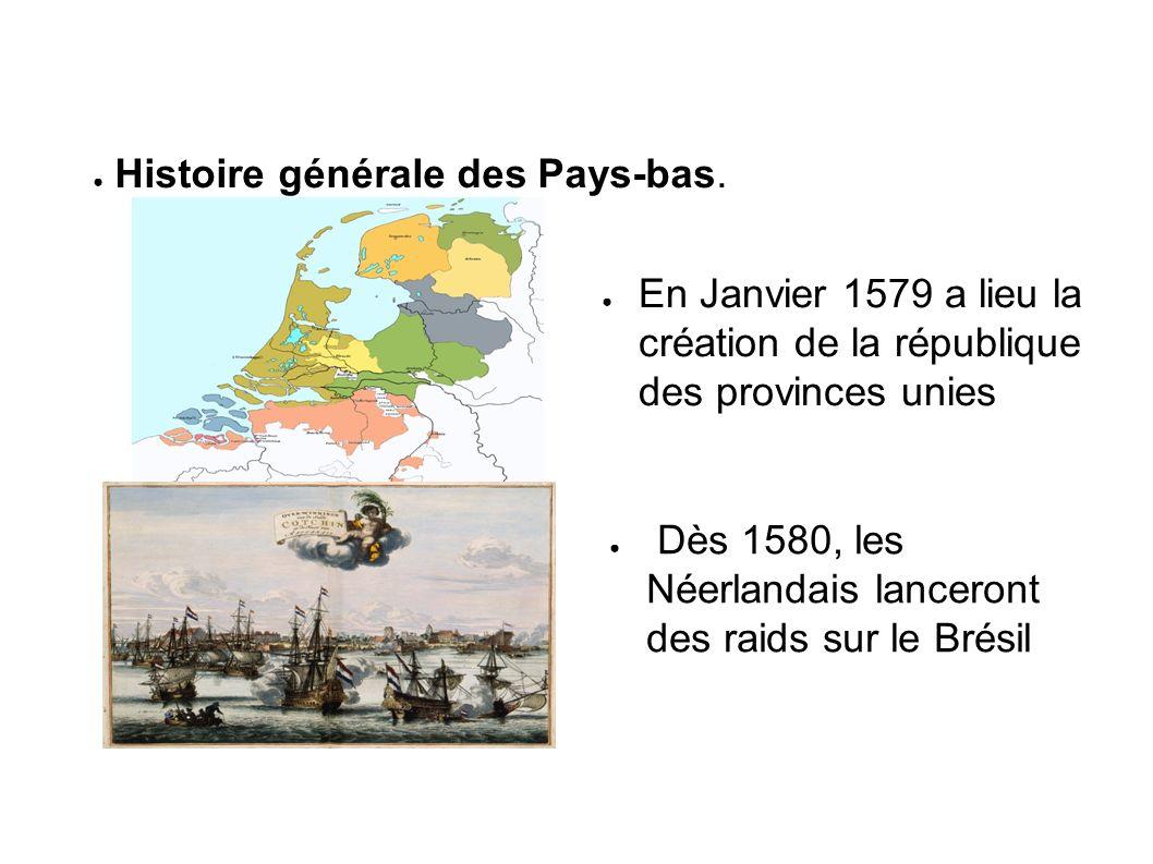 Histoire générale des Pays-bas.