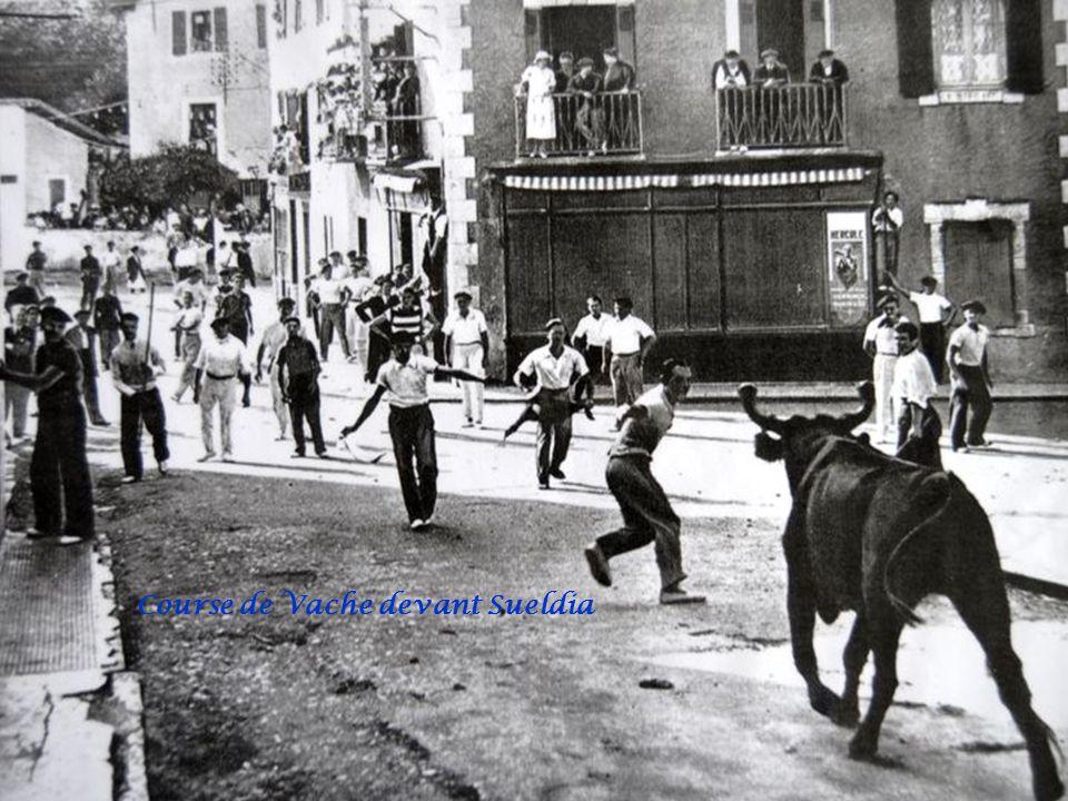 Course de Vache devant Sueldia