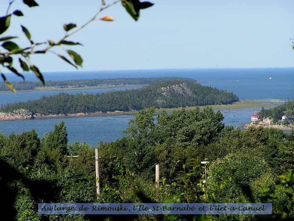 Au large de Rimouski , l'Île St-Barnabé et l'îlet-à-Canuel