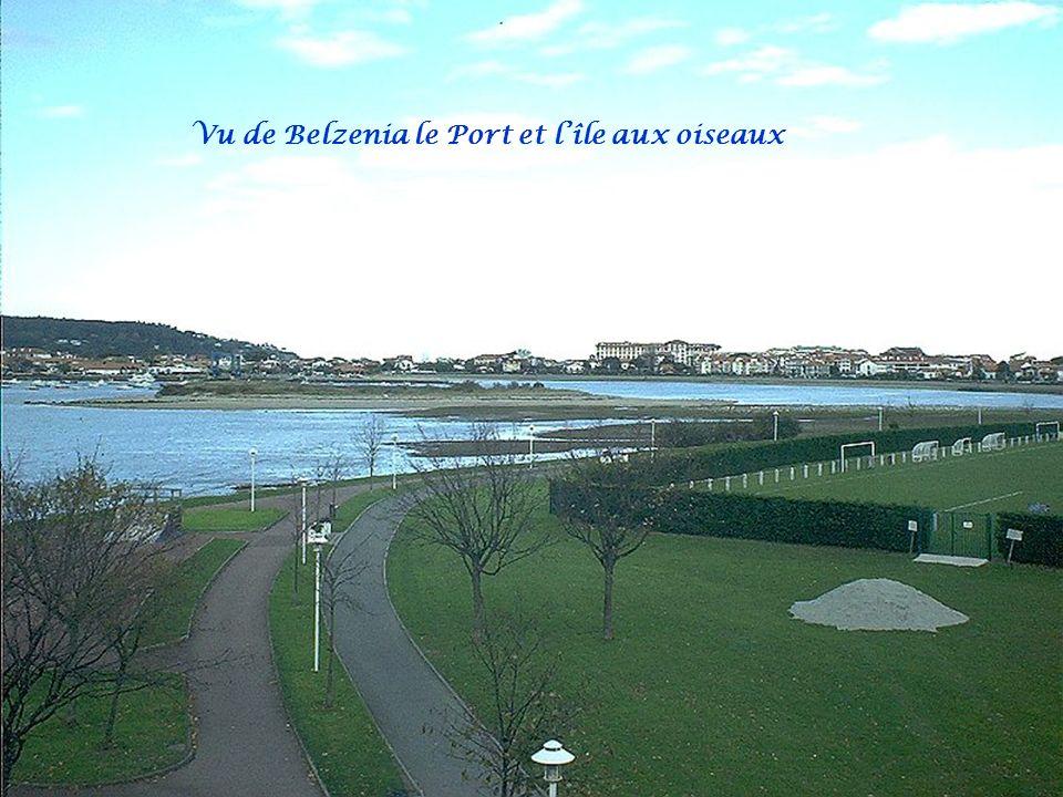 Vu de Belzenia le Port et l'île aux oiseaux