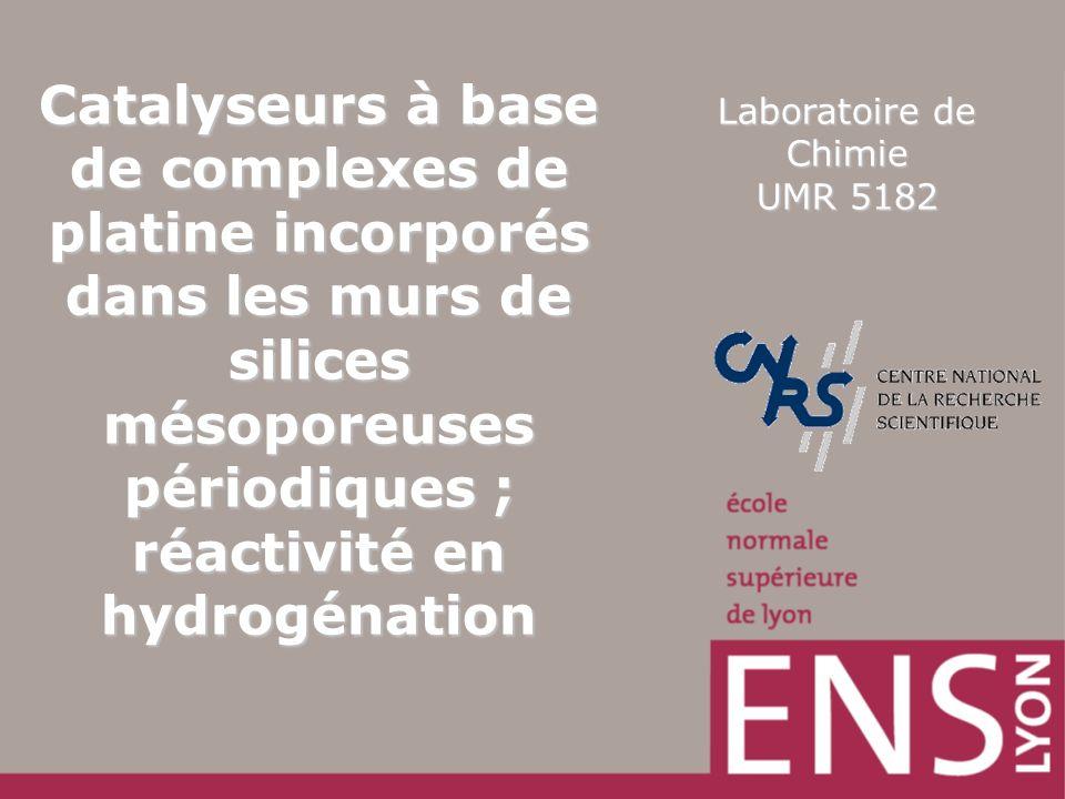 Laboratoire de Chimie UMR 5182