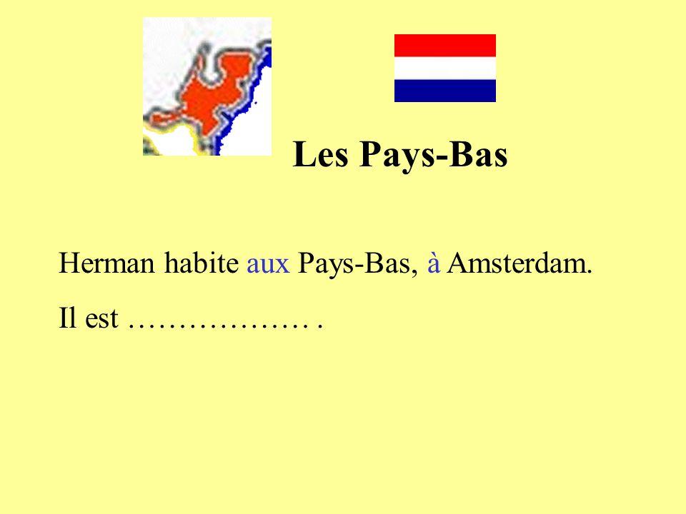 Les Pays-Bas Herman habite aux Pays-Bas, à Amsterdam. Il est ……………… .