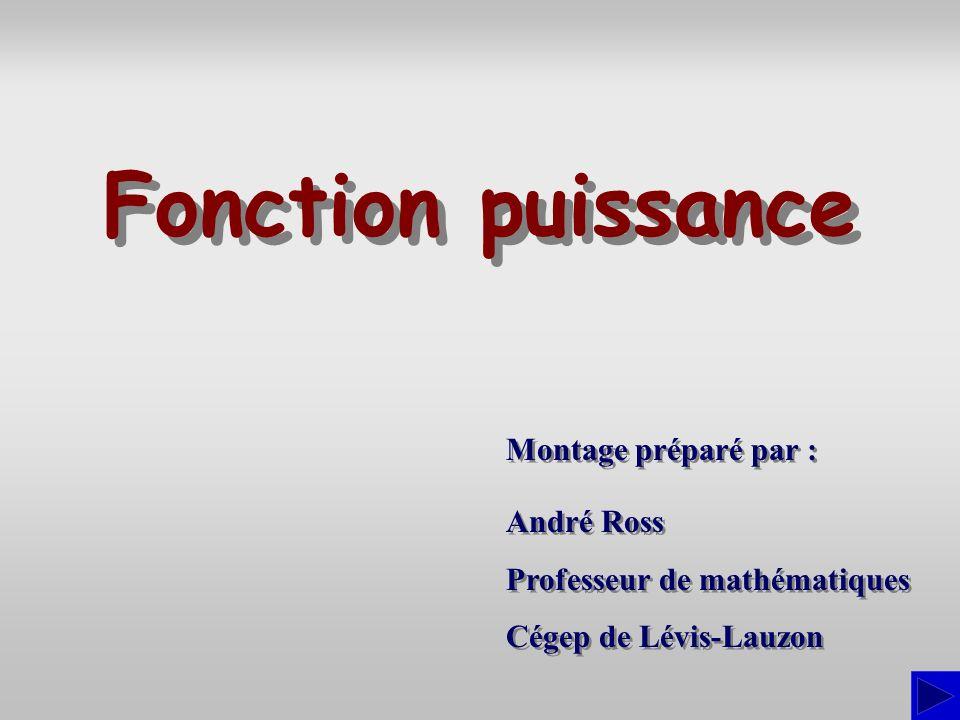 Fonction puissance Montage préparé par : André Ross