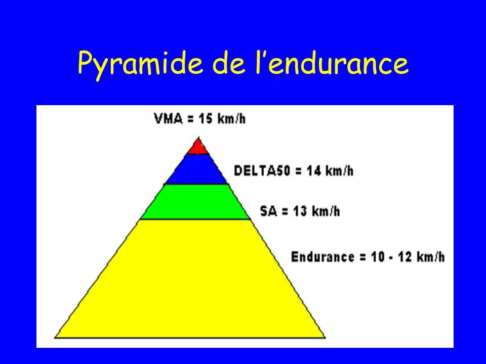Pyramide de l'endurance