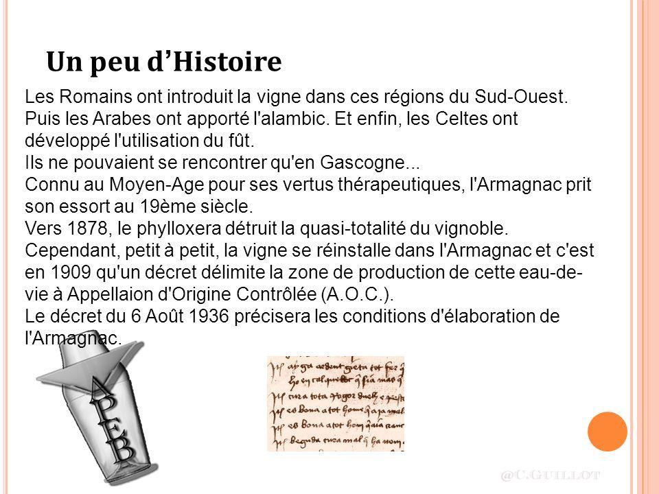 Un peu d'Histoire Les Romains ont introduit la vigne dans ces régions du Sud-Ouest.