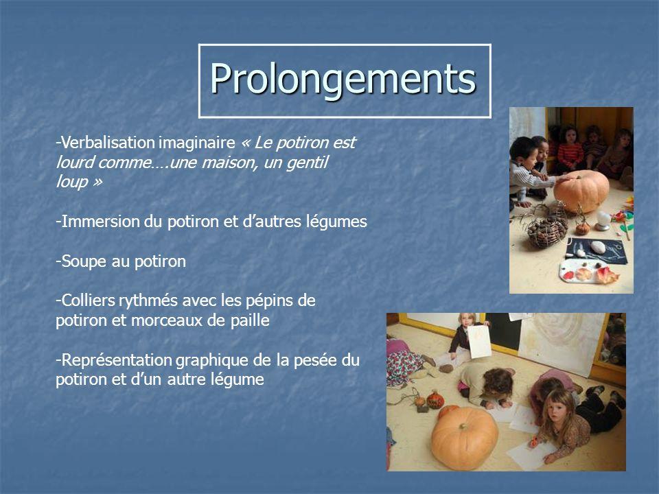 Prolongements -Verbalisation imaginaire « Le potiron est lourd comme….une maison, un gentil loup » -Immersion du potiron et d'autres légumes.