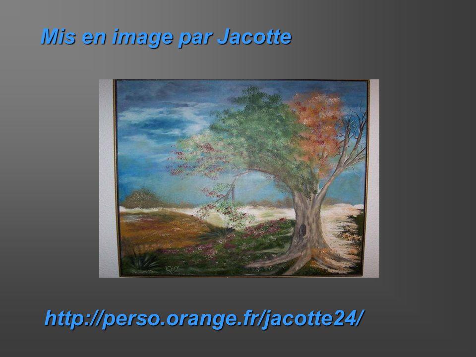 Mis en image par Jacotte