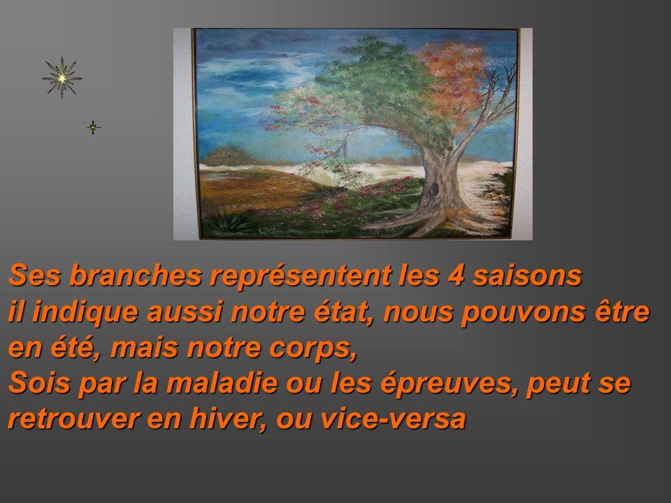 Ses branches représentent les 4 saisons