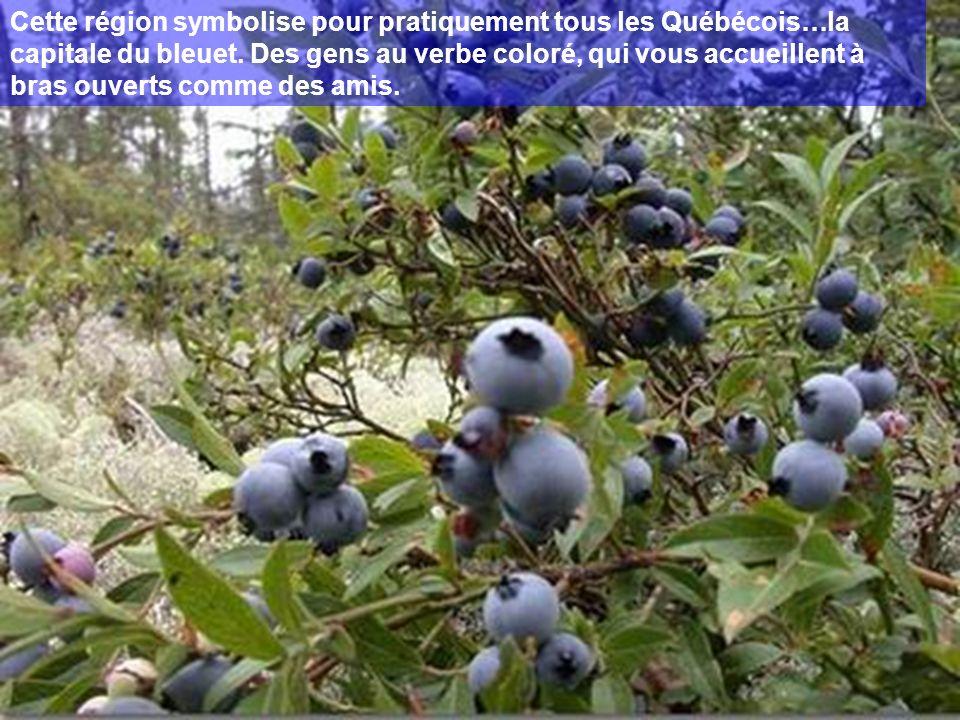 Cette région symbolise pour pratiquement tous les Québécois…la capitale du bleuet. Des gens au verbe coloré, qui vous accueillent à bras ouverts comme des amis.